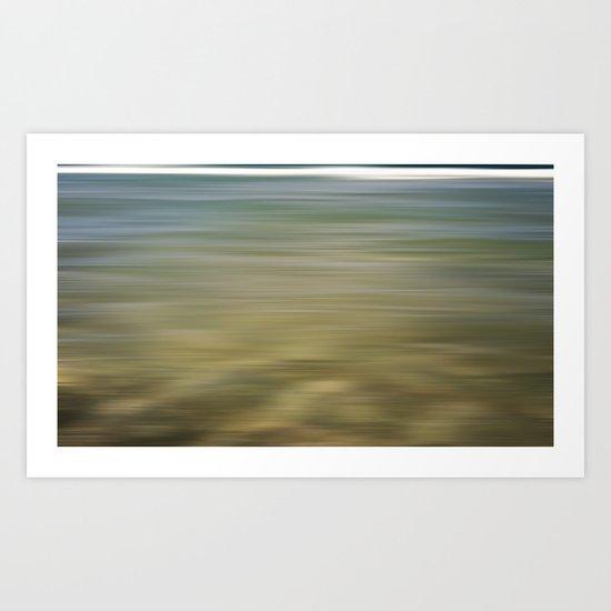 Ocean Reef Park 2012 Art Print