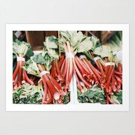 Rhubarb shot on film Art Print