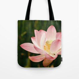 Radiant Lotus Tote Bag