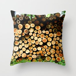 The Great Wall Of Wood Throw Pillow