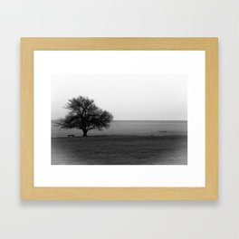 Lonley Framed Art Print