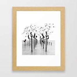 Cats Hunt Birds Framed Art Print