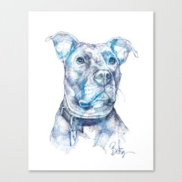 """""""Hank"""" the Rescue Blue Nose Pitbull Staffordshire Terrier Canvas Print"""
