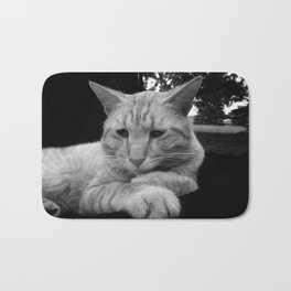 Comfortable Cat Bath Mat