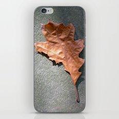old leaf II iPhone & iPod Skin