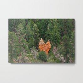 Odd shape rock at Bryce Canyon National Park Metal Print