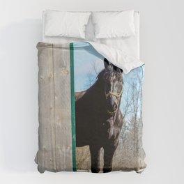 Percheron Horse by Teresa Thompson Duvet Cover
