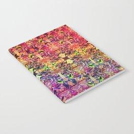 BARF Notebook