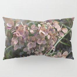 Pastel Pink Pillow Sham