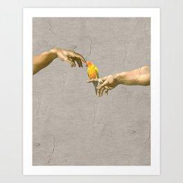 Scritching a sun conure Art Print