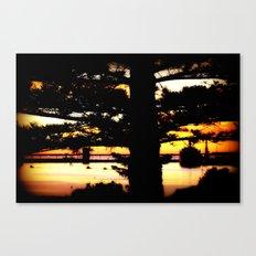 Sunrise between Norfolk Pines Canvas Print