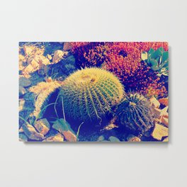 Vintage pop garden succulent and cactus Metal Print