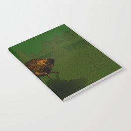 Bison Notebook