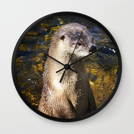 Sea Otter Canvas Print, Photographic Print, Art Print, Framed Print, Greeting Card, iPhone Case, Wall Clock