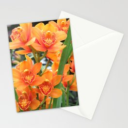 Orchid in Orange Stationery Cards