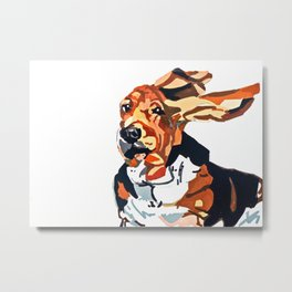 Basset Hound Flying Ears Portrait Metal Print