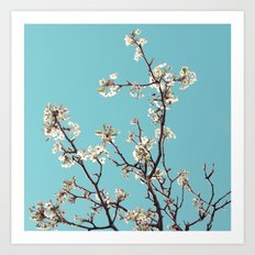 Almost spring time! Art Print