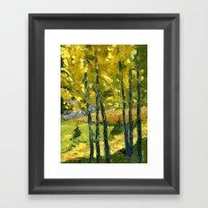 Backlit Aspens Framed Art Print