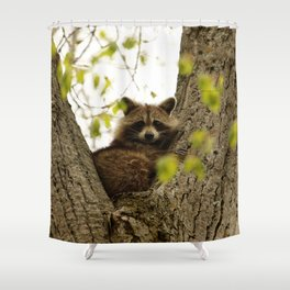 Happy in her hideout Shower Curtain