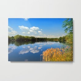 Beautiful lake 44 Metal Print