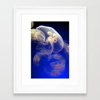 jelly fish Framed Art Prints featuring Jelly Fish by Shannon McCullough-Wight
