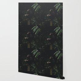 Odyssey Wallpaper