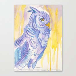 Looking ahead, Owl Canvas Print