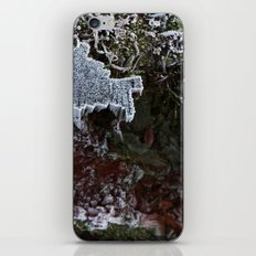 Frosted iPhone & iPod Skin