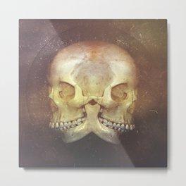 Siamese  Metal Print