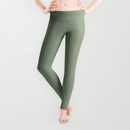 Dark Pastel Sage Green Solid Color Parable to Valspar Irish Paddock 5006-4A Leggings