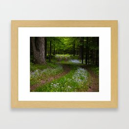 Forget-me-not Trail Framed Art Print