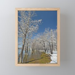 Snow-covered trees in the water near the river during the floods in the dark water Framed Mini Art Print