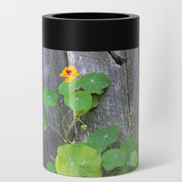 The Garden Wall Can Cooler