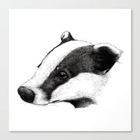 badger Canvas Prints featuring Badger by Sam Chelton. London based illustrator.