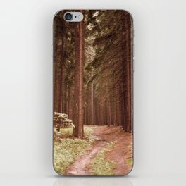 A Path in the Woods iPhone Skin