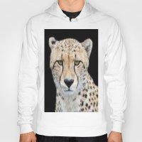 cheetah Hoodies featuring Cheetah by Lynn Bolt