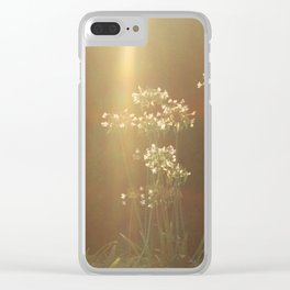 Late afternoon Clear iPhone Case