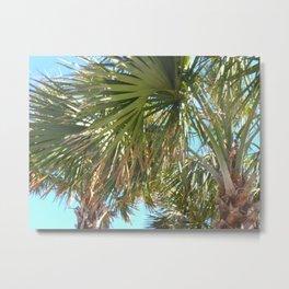 palm vibes Metal Print