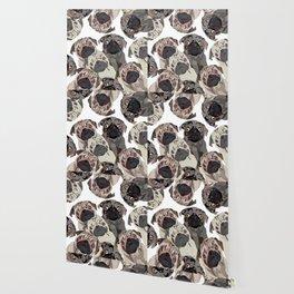 Pug Nation Wallpaper