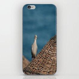Dove On A Woven Sun Parasol iPhone Skin