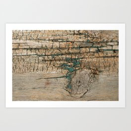 Rustic Wood Ages Gracefully - Beautiful Weathered Wooden Plank - knotty wood turquoise paint Art Print