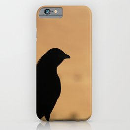 Bird in nature – Masada – Travel Photography Israel iPhone Case