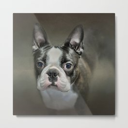 The Face Of The Boston Metal Print
