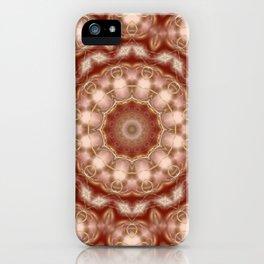 Walking through the universe iPhone Case