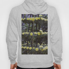 Longwood Gardens Autumn Series 206 Hoody
