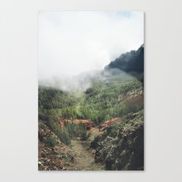 Mountain forest. Canvas Print