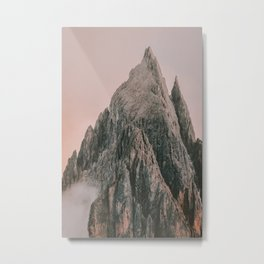 MOUNTAIN ROSE Metal Print
