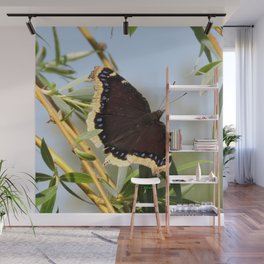 Mourning Cloak Butterfly Sunning Wall Mural