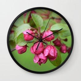 Crabapple Blooms Wall Clock