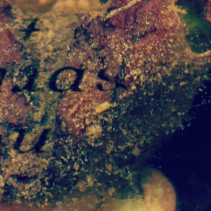 Waterlily Leaves - JUSTART © Leggings